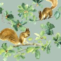 Serviete, veverici