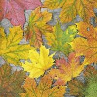 Serviete, barvito listje